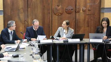 The two virtual meetings were organized at ECLAC's headquarters in Santiago, Chile.
